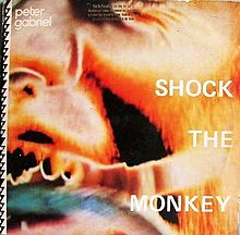 Shock the monkey – Peter Gabriel