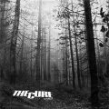 A forest – The Cure